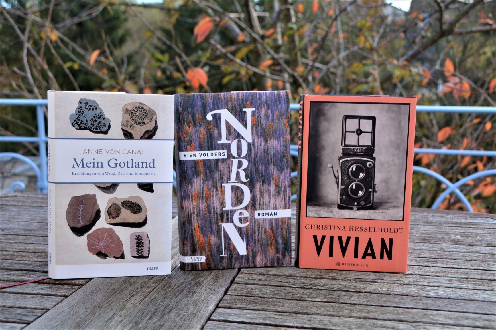 Zwei Romane und eine Erzählung